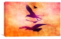Free As A Bird, Canvas Print