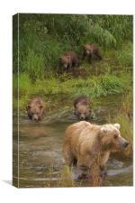 Bear family II, Canvas Print