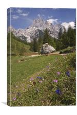Alpine scenery, Canvas Print