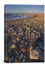 Rocky beach, Canvas Print