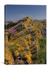 Scottish coast, Canvas Print