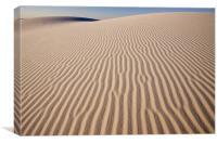 White Sands , Canvas Print