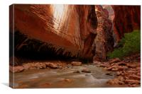 The Narrows V, Canvas Print