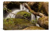 Becky Falls Dartmoor, Canvas Print