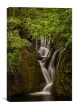 Dyfi Furnace waterfall, Canvas Print