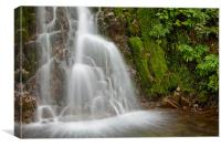Green waterfall, Canvas Print