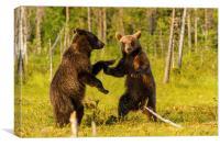 Dancing bears, Canvas Print