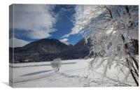 Winter in the alps, Canvas Print