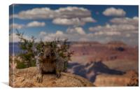 Sentinel of the Grand Canyon, Canvas Print