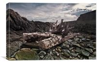 Driftwood at Old St John's Point co down, Canvas Print