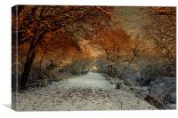 Winter Colour, Canvas Print