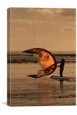 Flying High at the Beach, Canvas Print