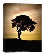 Sunset Sentinel, Canvas Print