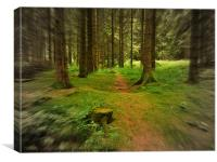 Woodland Run, Canvas Print