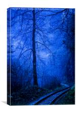 In the dark blue forest