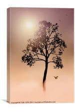 A TREE IN THE FOG, Canvas Print
