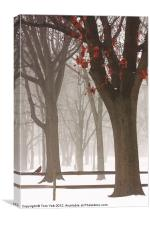 WINTER IN THE WOODS, Canvas Print