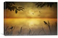 AMBER MORNING, Canvas Print