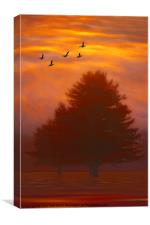 TREES OF AUTUMN, Canvas Print