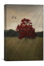 A TREE IN AUTUMN, Canvas Print