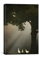 A MEETING UNDER THE TREE, Canvas Print