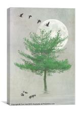 A TREE IN THE MOONLIGHT, Canvas Print