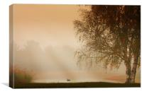 MISTY MORNING BEAUTY, Canvas Print