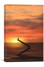 CORMORANT IN THE SUNSET, Canvas Print