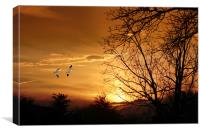 SNOW GEESE AT SUNSET, Canvas Print