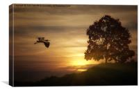 Heron At Sunset, Canvas Print