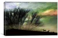 Alone On A Hill, Canvas Print