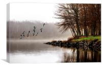 Fog On The Lake, Canvas Print