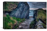 Pathway To Lansallos Cove, Canvas Print