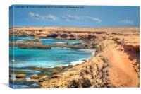 Fuerteventura Playa de los Ojos, Canvas Print