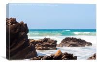 Fuerteventura Playa de Garcey - site of the shipwr, Canvas Print