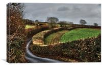Devon Country Lane, Canvas Print