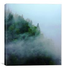 After the Storm, Canvas Print