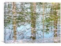 Blossom Lake, Canvas Print