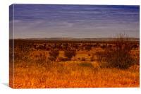 McDonald Ranges, Canvas Print