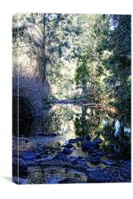 Strongs Creek, Canvas Print