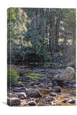 Strongs Creek II, Canvas Print