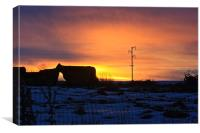 Cattle In The Setting Sun, Canvas Print