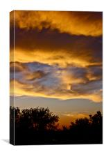 Golden Clouds, Canvas Print