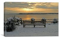 A Winter's Seat, Canvas Print