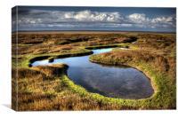 Salt marsh pool, Canvas Print