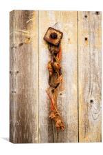 Chain on wooden door, Canvas Print