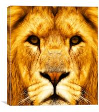 Into the Lions den, Canvas Print