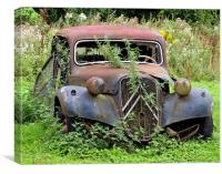 Abandoned Citreon
