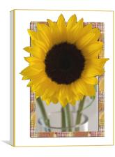 Sunflower Picture, Canvas Print