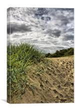 Sand dune, Canvas Print